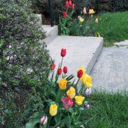April Trestleboard